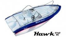 silver-hawk-540